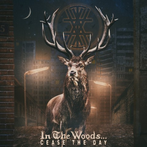 "Exclusive: In the Woods… ""Respect My Solitude"" single premiere"